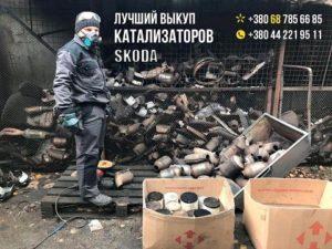 Продать катализатор Skoda / Шкода